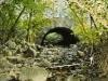 ccc bridges whitnall park